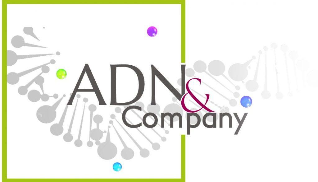 ADN&CO-logo-maquette