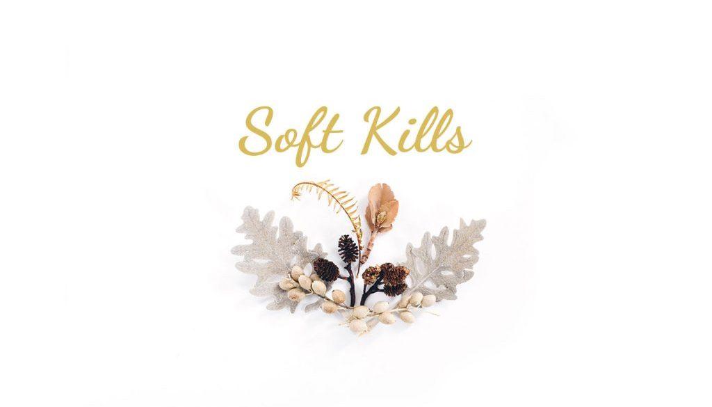 soft kills adn company