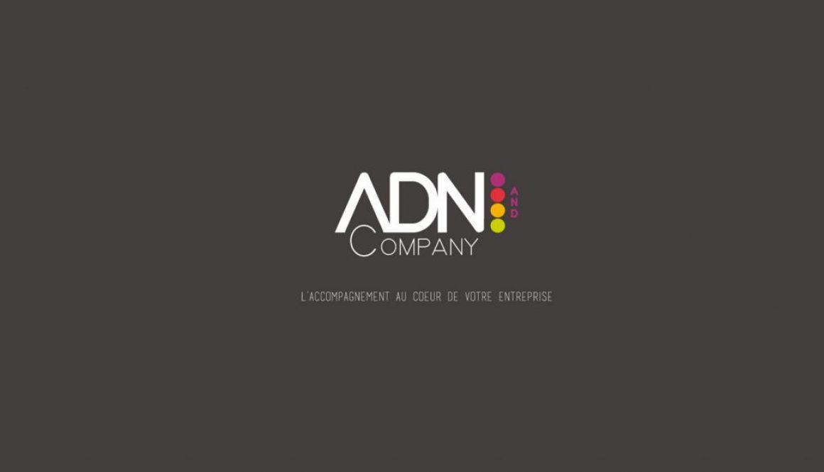 creation adn company